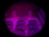 Obrázek: Plasmová úprava Tantec je zásadní pro výrobu LED navigačních světel